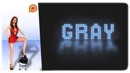 GRAY Ver.0.3a